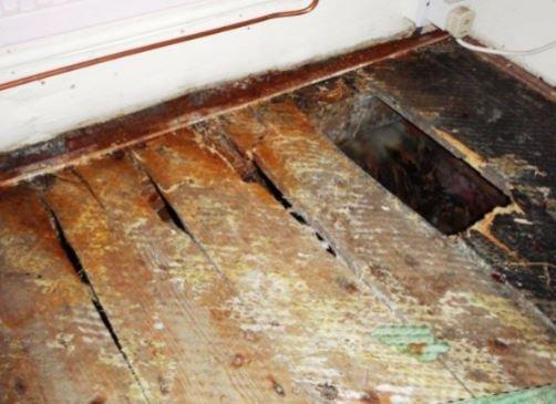 Flooring rot problem