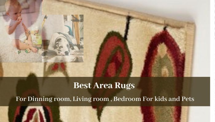 The best area rug