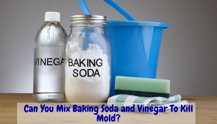can you mix vinegar and baking soda, How to Clean Mold with Vinegar and Baking Soda