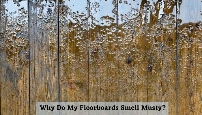 Why Do My Floorboards Smell Musty? what causes a musty smell on a house floor?