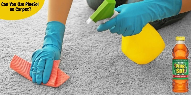 Can You Use Pine Sol on Carpet?